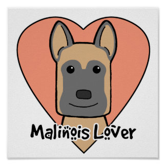 Malinois Lover Poster