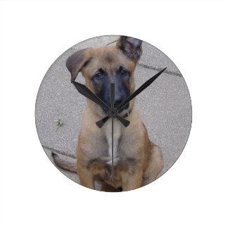 malinois puppy sitting.png round clock