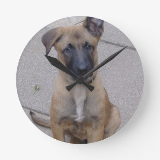 malinois puppy sitting.png round wall clocks