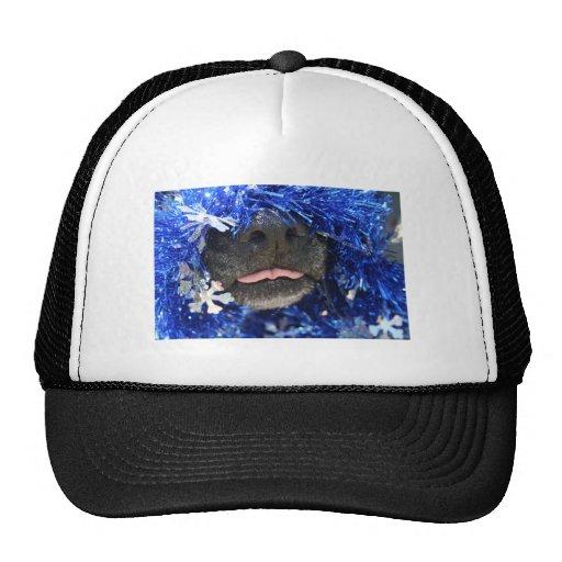 Malla del azul de la lengua de la nariz de perro p gorras de camionero