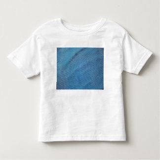 Malla plástica azul playeras