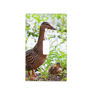 Mallard and Ducklings by Shirley Taylor Light Switch Cover