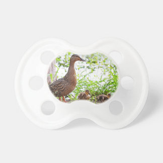 Mallard and Ducklings Pacifiers