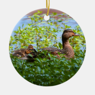 Mallard and Ducklings-Swimming by Shirley Taylor Ceramic Ornament