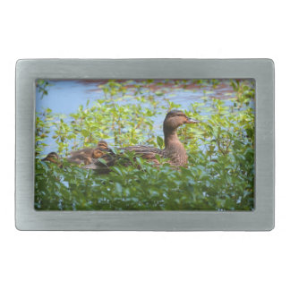 Mallard and Ducklings-Swimming by Shirley Taylor Rectangular Belt Buckle