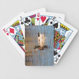 Mallard Bicycle Playing Cards