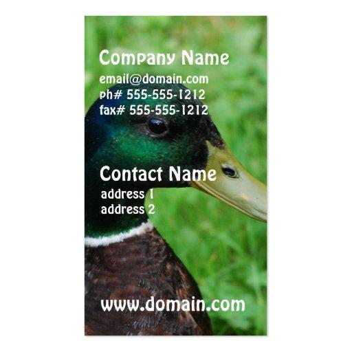 Mallard Business Cards