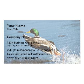 Mallard drake business cards