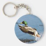 Mallard Drake Duck Keychain