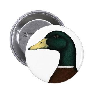 Mallard Drake Head Button