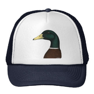 Mallard Drake Head Hats