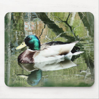 Mallard Drake reflections Mousepad- personalize Mouse Pad