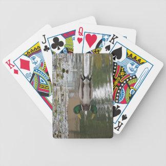 Mallard Duck at Lake Meridian Playing Cards