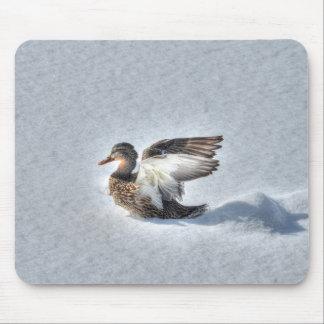Mallard Duck Birdlover Wildlife Photo Mousepad