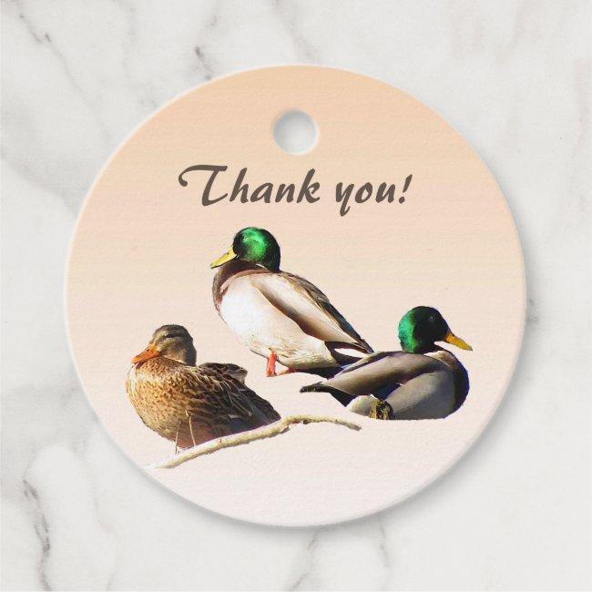 Mallard Duck BirdsThank You Favor Tags