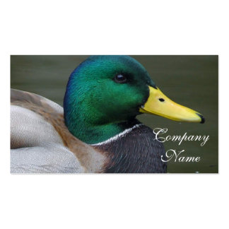 Mallard Duck Double-Sided Standard Business Cards (Pack Of 100)