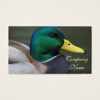 Mallard Duck Business Card