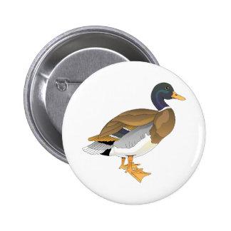 Mallard Duck (Drake) Button