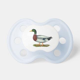 Mallard Duck Drake Pacifiers