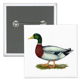 Mallard Duck Drake Pinback Button