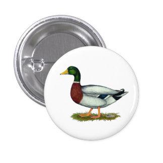 Mallard Duck Drake Pinback Buttons