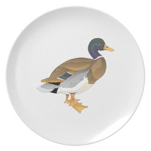 Mallard Duck (Drake) Dinner Plate