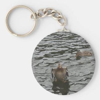 Mallard Duck Female Basic Round Button Keychain