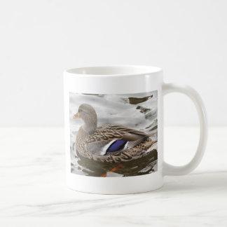 Mallard Duck Female Coffee Mug