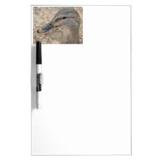 Mallard Duck Female Dry-Erase Boards
