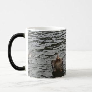 Mallard Duck Female Magic Mug