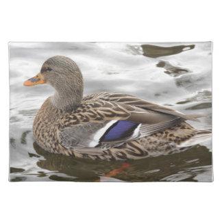 Mallard Duck Female Placemats