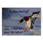 Mallard Duck Greeting Birthday Card