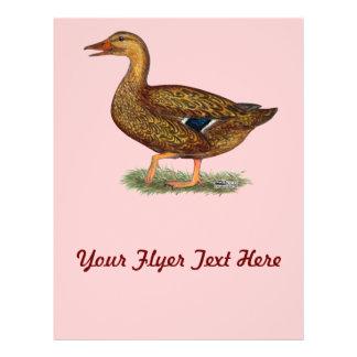 Mallard Duck Hen Flyer
