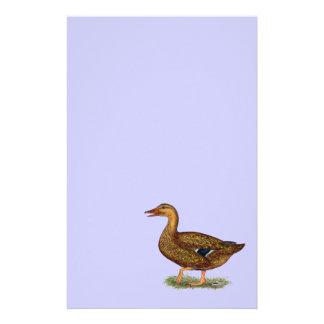 Mallard Duck Hen Stationery