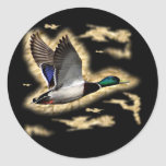 Mallard Duck Hunting Stickers