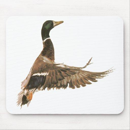 Mallard Duck in Flight Mouse Pad