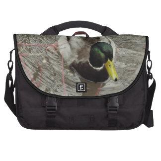 Mallard Duck in Pond Laptop Computer Bag