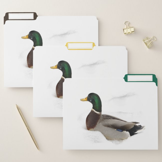 Mallard Duck in Snow File Folder Set