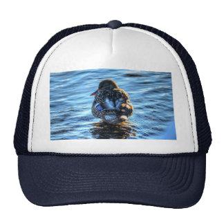 Mallard Duck in Winter River - Wildlife Photo Trucker Hats