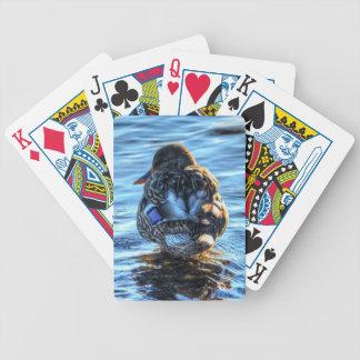Mallard Duck in Winter River - Wildlife Photo Poker Cards