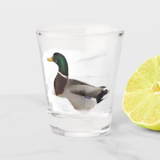 Mallard Duck in Winter Snow Animal Bird Shot Glass