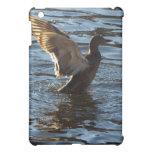 Mallard Duck iPad Cases