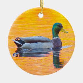 Mallard duck on orange lake, Canada Ceramic Ornament