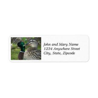 Mallard Duck Pair Return Address Labels