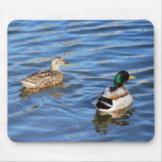 Mallard Duck Pairs Symbolize Love and Commitment Mouse Pad