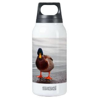Mallard Duck Photo Insulated Water Bottle