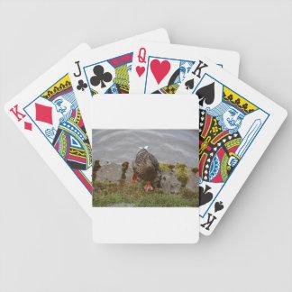 Mallard Duck Poker Cards