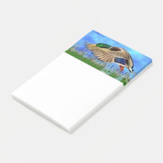 Mallard Duck Post-it Notes