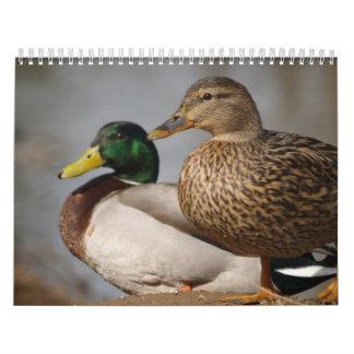 Mallard Duck Sportsman Calendar