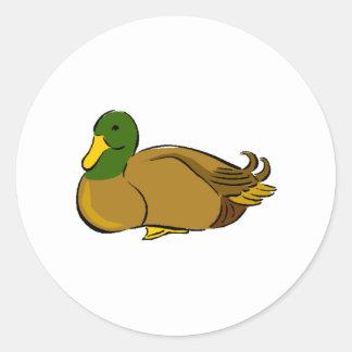 Mallard Duck Round Stickers